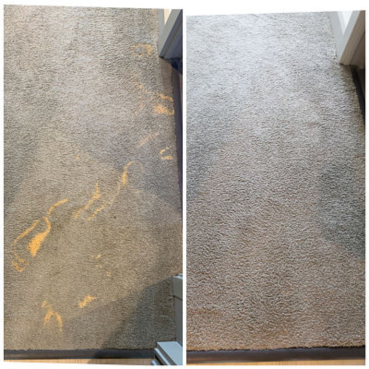 bleach stain repair